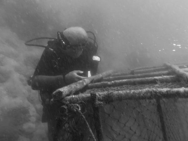 removing illegally set fishing cages